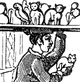 Cartoon of an image-seller with a tray crowded with nodding cats on his head